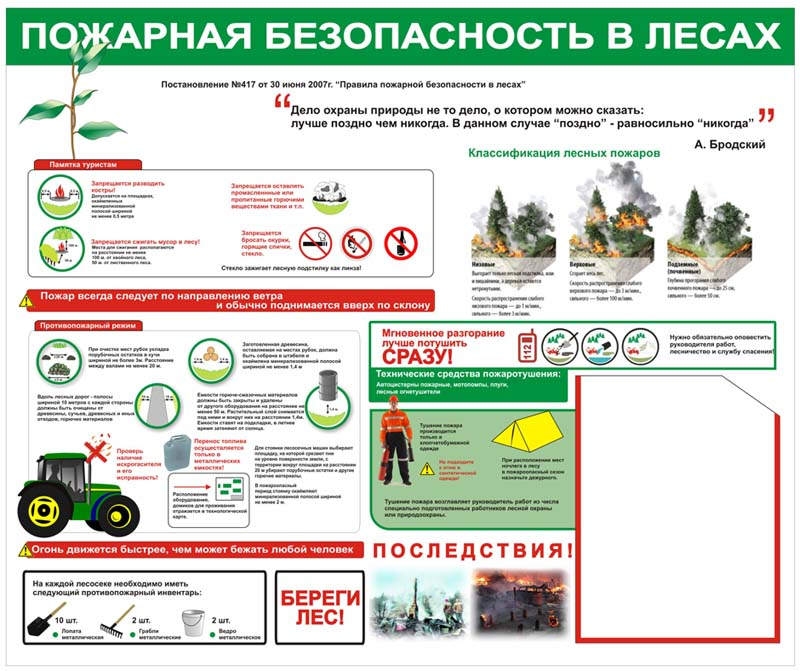 Стенд Пожарная безопасность в лесах