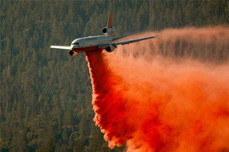 Лесные пожары смешные картинки, открытка для